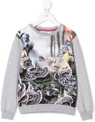 Molo squirrel print T-shirt