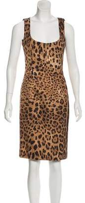 Dolce & Gabbana Animal Print Knee-Length Dress