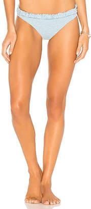 Shoshanna Pinstripe Bikini Bottom