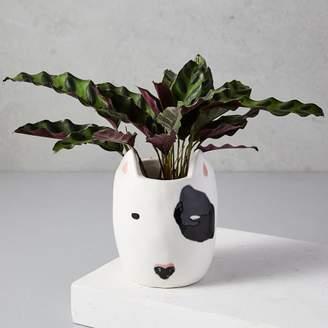 west elm Ceramic Dog Planter