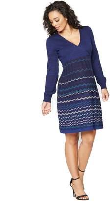 A Pea in the Pod Seraphine Blue Mixed Stripe Maternity Dress