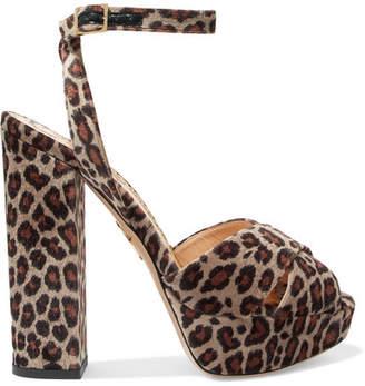 Charlotte Olympia Velvet Leopard-print Platform Sandals - Leopard print
