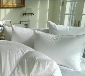 Alwyn Home Ingerson Siberian Down King Pillow Alwyn Home