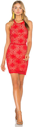 Endless Rose Woven Lace Dress