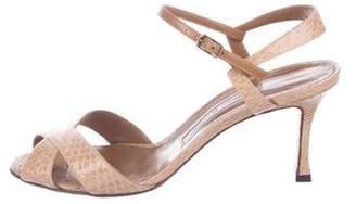 Manolo Blahnik Snakeskin Ankle Strap Sandals