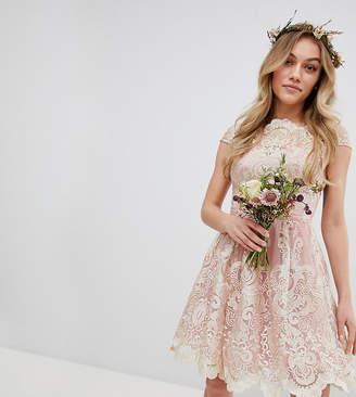 Bardot Chi Chi London Petite Premium Lace Midi Prom Dress With Neck