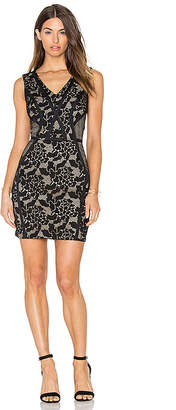 Greylin Sueann Lace Mix Dress