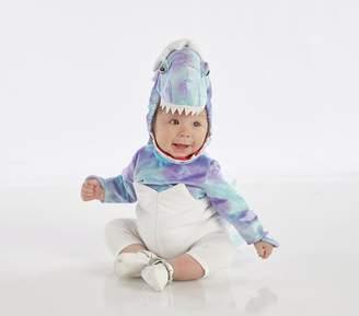 Pottery Barn Kids Baby Blue Dinosaur Egg Costume