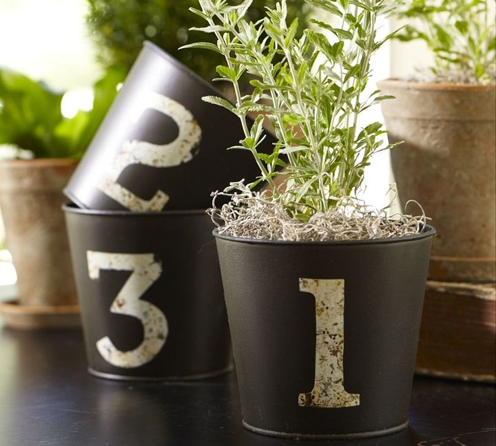 Numbered Cachepots, Set of 3