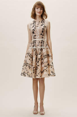 New View Bronx & Banco Cloe Dress