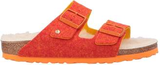 Birkenstock Sandals - Item 11587120QD