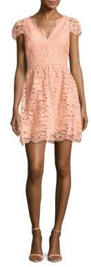 Alicia Floral Lace Fit & Flare Dress
