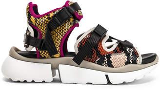 Chloé Platform Sandals in September Sun | FWRD