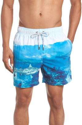 Trunks VINTAGE SUMMER Shark Swim