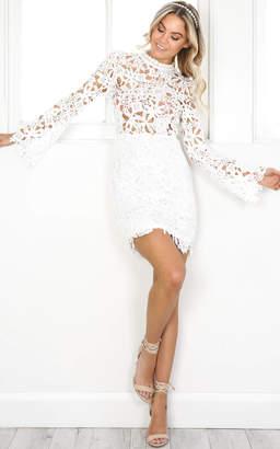 Showpo Fake Champagne dress in white lace