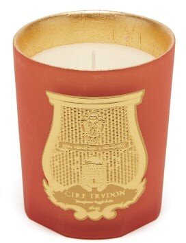 Cire Trudon Amon Scented Candle - Pink