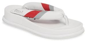 Ash Tonic Stripe Logo Flip Flop