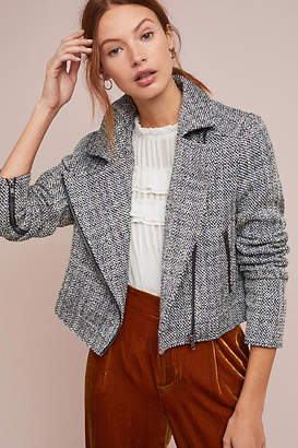 Cupcakes And Cashmere Gema Tweed Moto Jacket