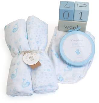 Child to Cherish Bubbles & Whales Goldilocks Swaddle, Handprint & Photo Block Gift Set