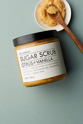 Fig + Yarrow Sugar Scrub
