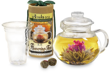 Primula Tea® 12 Flowering Teas with 5-Cup Glass Teapot