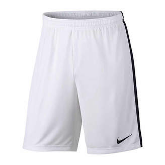 Nike Academy Regular Fit Dry Short