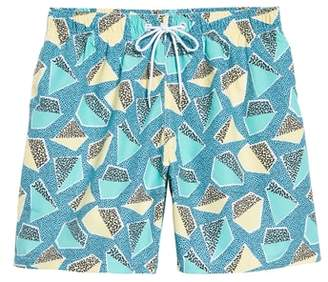 Trunks Boardies Everglades Swim