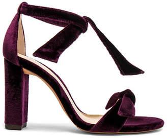 Alexandre Birman Velvet Clarita Block Heels