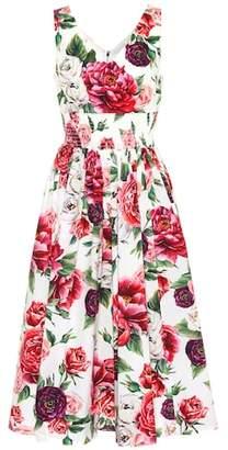 Dolce & Gabbana Floral-printed cotton dress