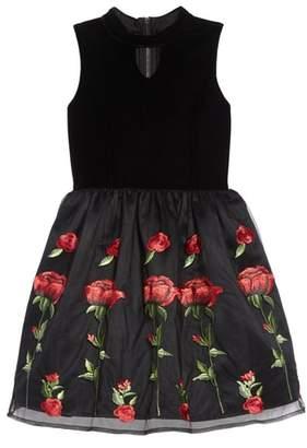 Blush by Us Angels Floral Embroidered Stretch Velvet Dress