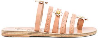 Ancient Greek Sandals x Fabrizio Viti Victoria Sandal