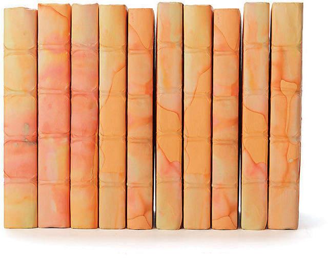 Linear Foot of Acid Wash Books - Orange