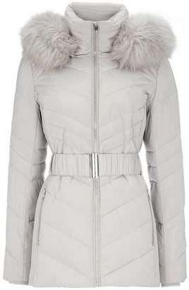 Wallis Petite Silver Short Padded Coat
