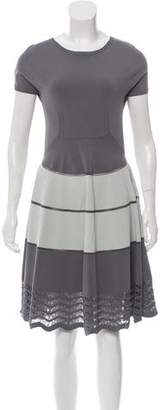 Fendi Fit and Flare Mesh Trim Dress