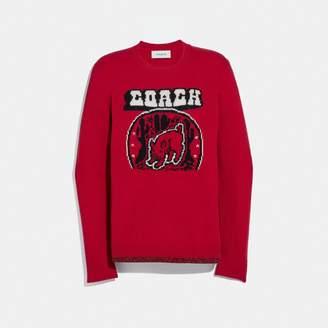 Coach Lunar New Year Sweater