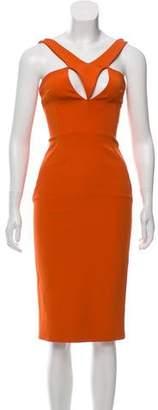 Cushnie et Ochs Sleeveless Bodycon Dress