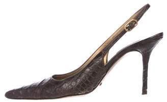 Dolce & Gabbana Crocodile Slingback Pumps