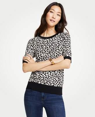 Ann Taylor Leopard Print Short Sleeve Sweater