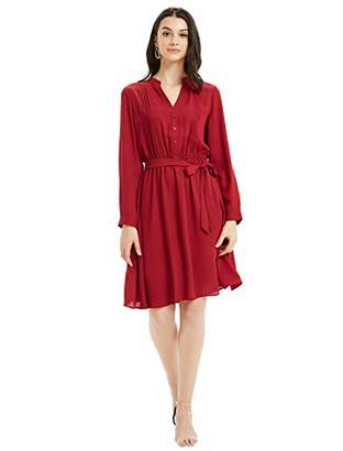 Basic Model Maxi Dress with Long Sleeves for Women - V Neck Casual Flattering Knee-Length Dresses for Party