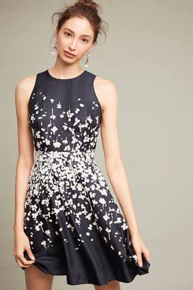 Donna Morgan Printed Petalburst Dress $178 thestylecure.com