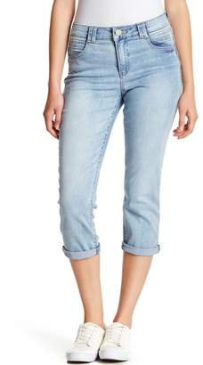 Democracy High Rise Cropped Jeans (Petite)