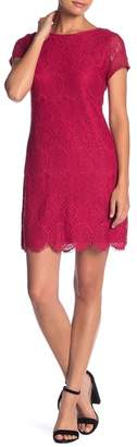 Laundry by Shelli Segal Lace Cap Sleeve Dress (Petite)