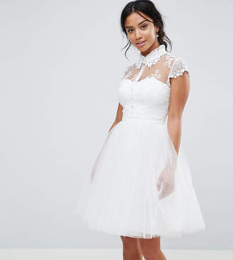 Chi Chi London Petite Mini Tulle Skater Dress With Lace Collar