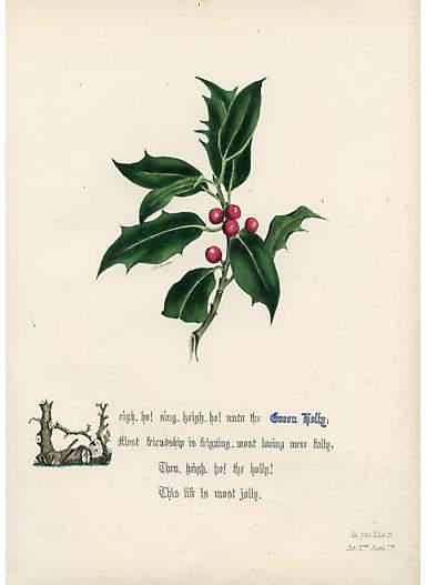 One Kings Lane Vintage Shakespeare Holly Print - 1846