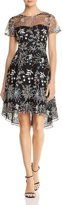 Adrianna Papell Embroidered Tulle Dress
