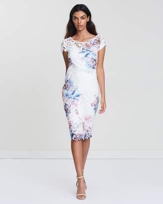 Dorothy Perkins Yasmin Lace Dress