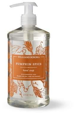 Williams-Sonoma Williams Sonoma Pumpkin Spice Hand Soap