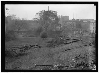 Columbia Historic Photos 1917 Photo DISTRICT OF PARKS. CUTTING TREES ON MALL SITES FOR WAR BUILDINGS Location: Washington D.C.