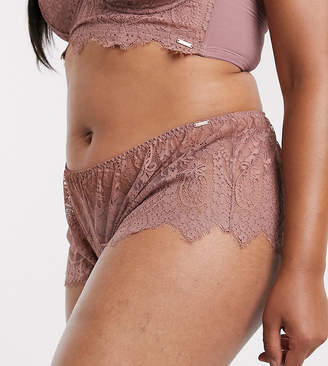 Figleaves Curve Adore lace underwear in mocha