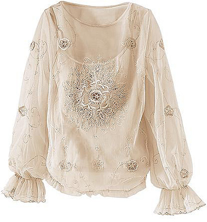 Embroidered mesh blouse